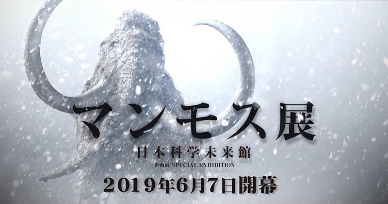 ロシア連邦サハ共和国で発掘『マンモス展』6月7日(金)〜11月4日(月・祝) @日本科学未来館