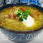 ロシアのザワークラウトのスープ。 (Щи)