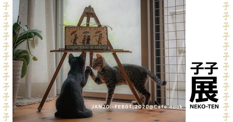子子展 - NEKO TEN - 子子(¡Vamos! & Давай! )と世界の猫たち
